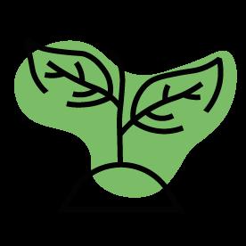 Embalajes biodegradables