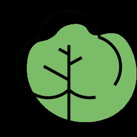Rellenos de madera sostenible