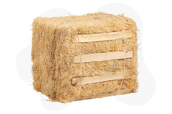 Viruta de madera